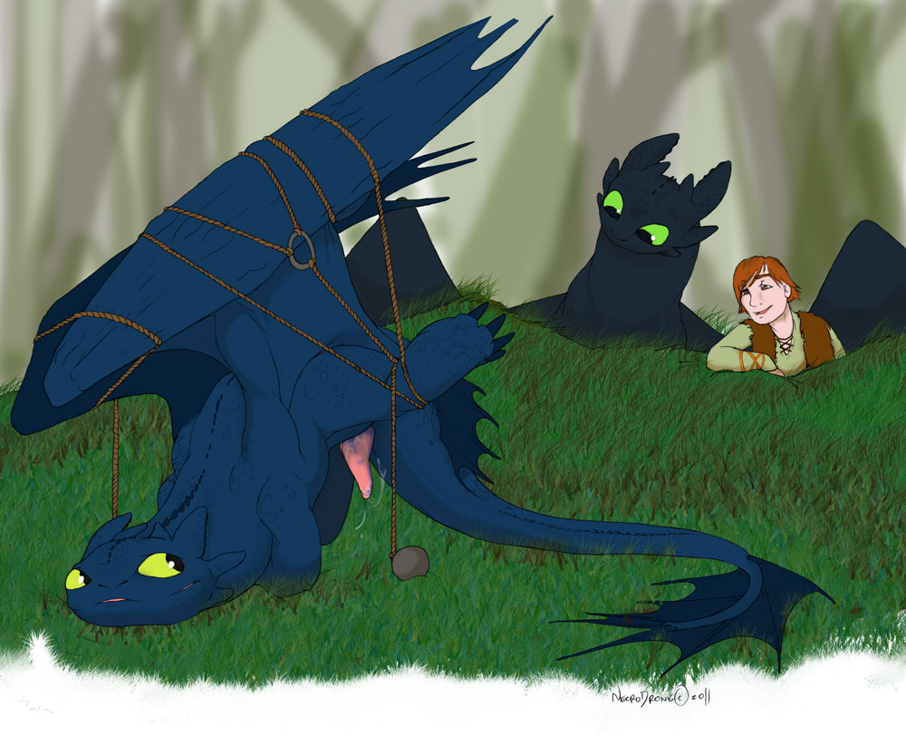 pregnant fanfiction toothless hiccup gets My very own lith e621